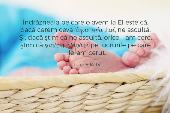 versetesarcina_imagini23