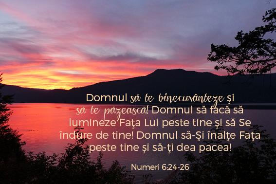 versetesarcina_imagini24