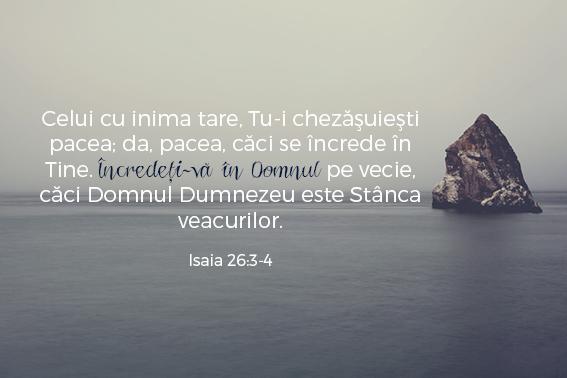 versetesarcina_imagini25