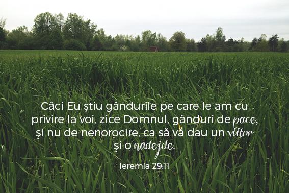versetesarcina_imagini26