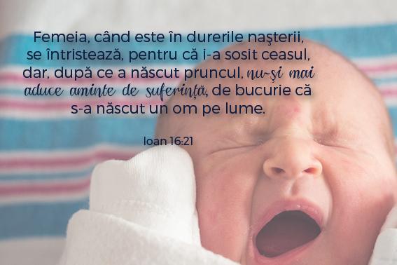 versetesarcina_imagini8